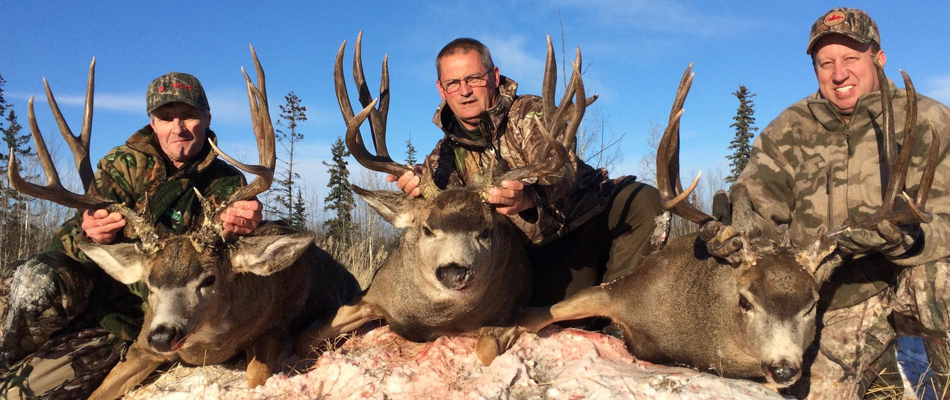 Mule Deer Hunting with Mikes Outfitting